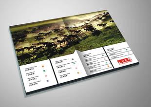 杭州双马生物企业宣传画册设计